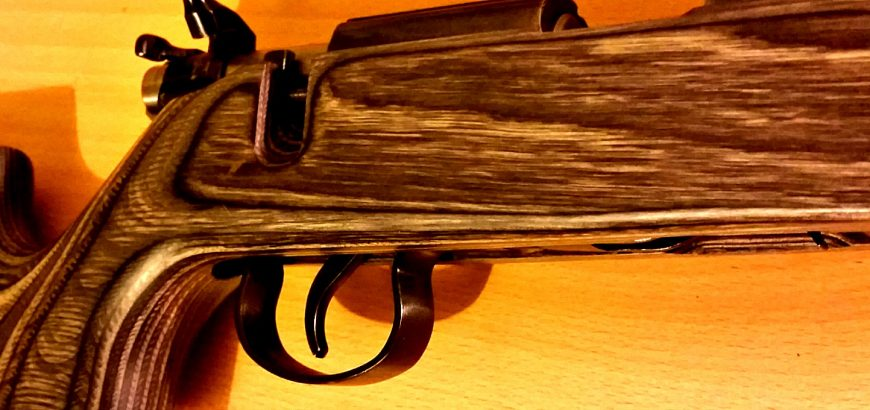 JW-15 with adjusted trigger in Boyds varmint stock.